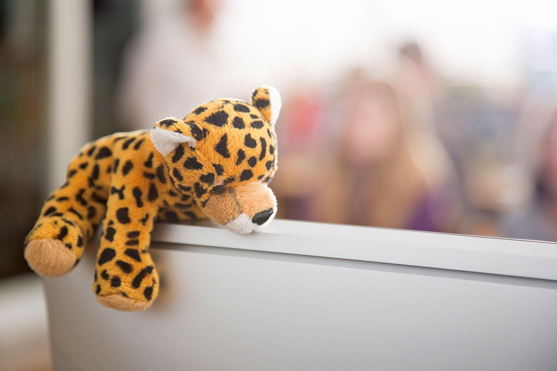 Leoparden-Plüschtier liegt auf Computerbildschirm