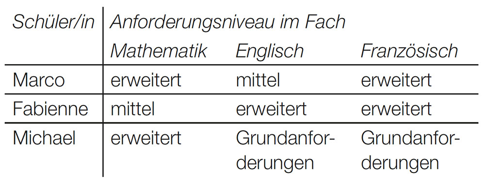 Tabelle Niveaugruppen pro Schüler und Fach