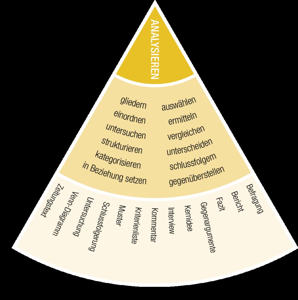 IQES-Kompetenzrad: Sektor Analysieren